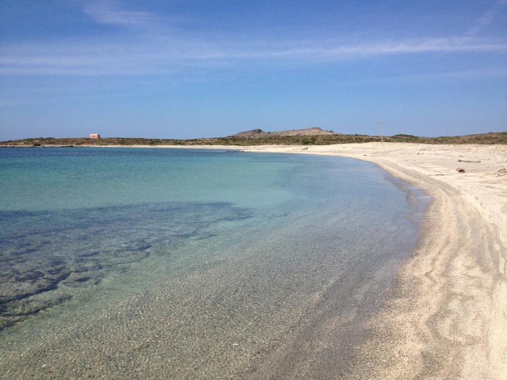 asinara-spiaggia-16