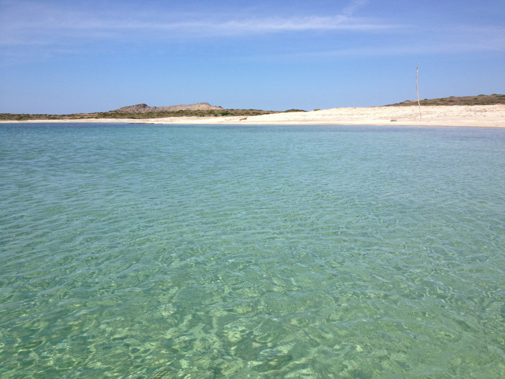 asinara-spiaggia-18