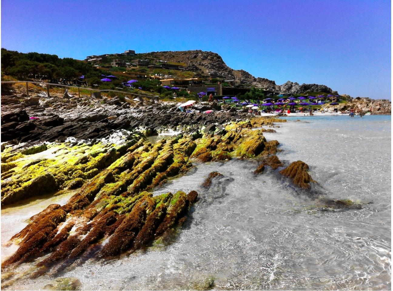 la pelosetta-spiaggia